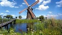 Hà Lan – một trong 23 thị trường đạt kim ngạch xuất khẩu tỷ đô