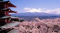 Nhập khẩu từ Nhật Bản, nhóm hàng than đá tăng mạnh