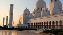 UAE thị trường xuất khẩu tiềm năng của Việt Nam