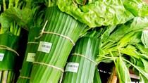 Báo Singapore ca ngợi Việt Nam sử dụng lá chuối để gói rau
