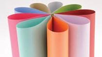 Nhập khẩu giấy giảm trở lại cả về lượng và trị giá