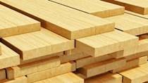 Thị trường cung cấp gỗ và sản phẩm từ gỗ 9 tháng năm 2019