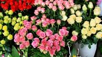 Lâm Đồng và TP.Hồ Chí Minh sẽ xây dựng trung tâm giao dịch hoa