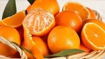 TT trái cây tuần qua: Biến động tăng/giảm tùy theo từng chủng loại