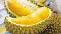 TT trái cây tuần qua: Giá sầu riêng giảm, ngược lại dứa và dừa khô tăng