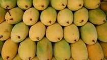 TT rau quả và trái cây tuần qua: Giá rau xanh giảm, trái cây bị đẩy lên cao