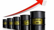 TT năng lượng tuần qua: Giá xăng ổn định, dầu thế giới tăng phiên cuối tuần