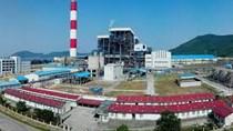 Formosa Hà Tĩnh được tự nhập than để phát điện