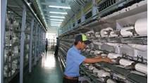 Chỉ số sản xuất công nghiệp Tây Ninh tăng trưởng mạnh
