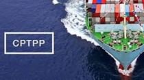 Thấy gì từ 112 tỉ USD các nước trong CPTPP đang đầu tư vào Việt Nam