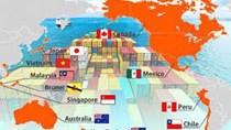 Các nước CPTPP mở cửa thế nào cho hàng hóa Việt Nam?