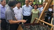 TP. Hồ Chí Minh: Tạo thuận lợi cho phát triển điện rác