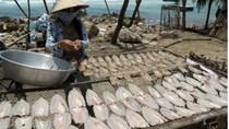 Cà Mau:Nâng giá trị sản phẩm công nghiệp nông thôn