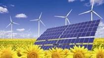 Thị phần năng lượng tái tạo thế giới tăng 50% vào năm 2050