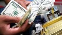 Gia tăng dự trữ ngoại hối, tỷ giá cuối năm có biến động?