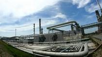 Bio Ethanol Dung Quất tái khởi động phân xưởng điện hơi