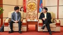 Nhật Bản muốn tham gia trong dự án điện khí miền Trung