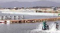 Sản lượng nuôi trồng thủy sản tháng 2/2018 tăng