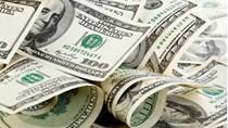 TT ngoại tệ ngày 15/12: tỷ giá trung tâm tiếp tục giảm, EURO quốc tế  tăng mạnh