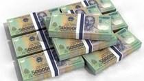 VND một năm ổn định, dự trữ ngoại hối lên mức 40 tỷ USD