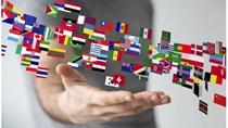 WTO nâng dự báo tăng trưởng toàn cầu năm 2017