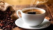 TT cà phê ngày 8/11/2018: Giá hồi phục tăng trở lại