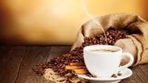 TT cà phê ngày 9/11/2018: Giá giảm 100 đồng/kg ở các tỉnh Tây Nguyên