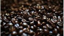 Nâng cao giá trị hạt cà phê Buôn Ma Thuột