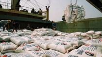 Cơ hội xuất khẩu 500.000 tấn gạo sang Philippines