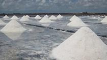 Giá muối tăng từ 300 – 500 đồng/kg