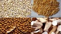 Tình hình nhập khẩu nguyên liệu sản xuất thức ăn chăn nuôi quý I/2017