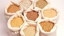Xuất khẩu thức ăn chăn nuôi và nguyên liệu suy giảm kim ngạch