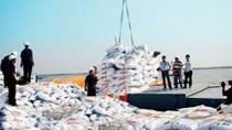 Việt Nam xuất khẩu phân bón chủ yếu sang các nước Đông Nam Á