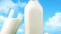 Giá sữa thế giới tăng 8 tuần liên tiếp