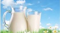 Nhập khẩu sữa từ các thị trường đều sụt giảm kim ngạch