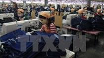 Báo chí châu Âu đánh giá cao thỏa thuận EVFTA giữa Việt Nam và EU