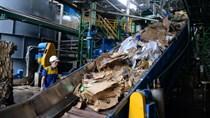Luật chờ hướng dẫn: Doanh nghiệp ngành giấy, thép gặp khó với thủ tục