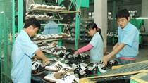 Doanh nghiệp da giày bỏ quên thị trường nội địa 5 tỷ USD