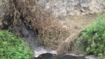 May Hồ Gươm bị phạt 150 triệu đồng vì xả thải gây ô nhiễm môi trường