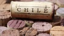 """Chile lần đầu tiên kỷ niệm """"Ngày Rượu vang quốc gia"""""""