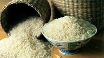 Việt Nam đề nghị Trung Quốc tăng nhập khẩu gạo