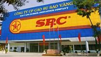 Cao Su Sao Vàng vay 3.100 tỷ đồng để di dời nhà máy sang Phủ Lý