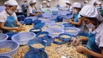 8 tháng 2015, kim ngạch xuất khẩu Việt Nam sang châu Phi tăng mạnh
