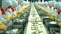 Những thách thức cho doanh nghiệp Việt xuất khẩu sang Auatralia