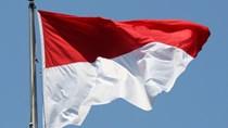 Hiệp định tránh đánh thuế hai lần giữa Việt Nam và Indonesia