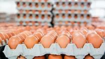 Công bố hạn ngạch thuế quan nhập khẩu muối và trứng gia cầm năm 2020
