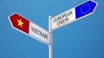 EVFTA-Cam kết về Hải quan và Tạo thuận lợi hóa thương mại