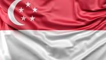 Hiệp định tránh đánh thuế hai lần giữa Việt Nam và Singapore