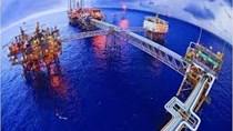 Đầu tư của ngành dầu khí sẽ giảm 30 tỷ USD do virus corona