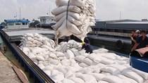 Bộ Công Thương phối hợp với Bộ Tài chính trong điều hành xuất khẩu gạo